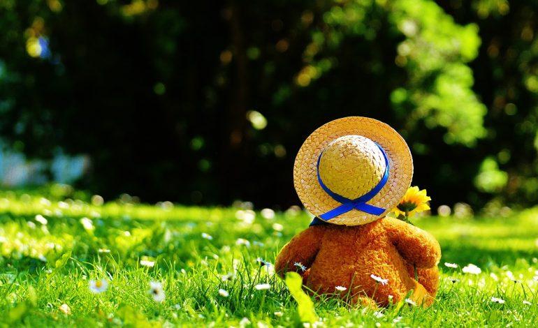 UOKiK: zabawki bez toksyn – wspólna akcja UOKiK, Inspekcji Handlowej i celników