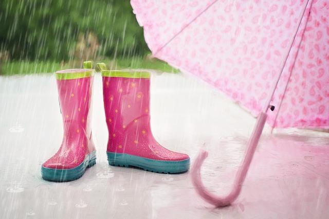 Od piątku wrocławianie będą mogli łapać deszczówkę z miejskim dofinansowaniem. Miasto uruchamia specjalne dopłaty